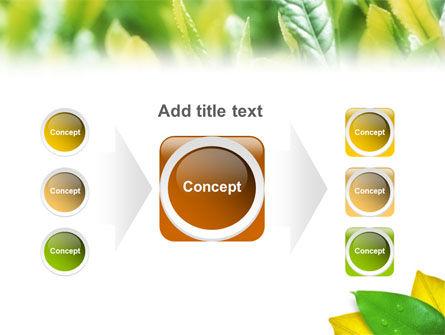 Indian Summer PowerPoint Template Slide 17