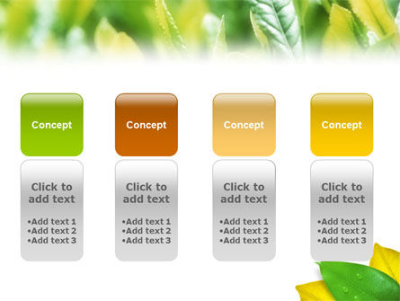 Indian Summer PowerPoint Template Slide 5