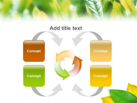 Indian Summer PowerPoint Template Slide 6