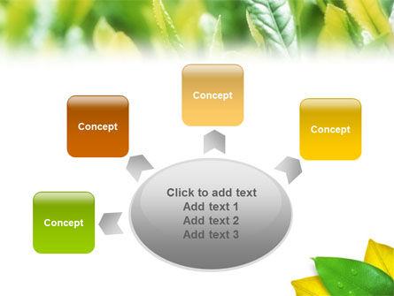 Indian Summer PowerPoint Template Slide 7