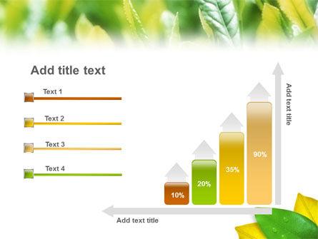 Indian Summer PowerPoint Template Slide 8