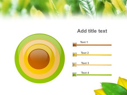 Indian Summer PowerPoint Template Slide 9