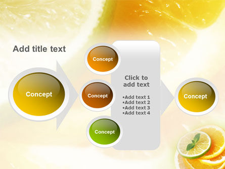 Citrus PowerPoint Template Slide 17