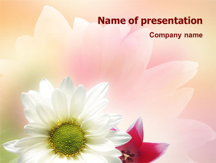 Nature & Environment: Oxy Daisy On A Pink Background PowerPoint Template #01514