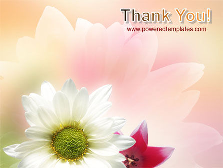 Oxy Daisy On A Pink Background PowerPoint Template Slide 20