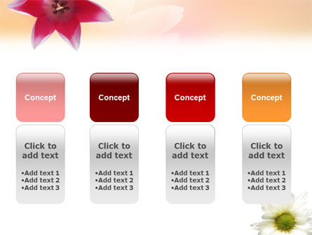 Oxy Daisy On A Pink Background PowerPoint Template Slide 5