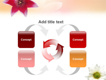 Oxy Daisy On A Pink Background PowerPoint Template Slide 6