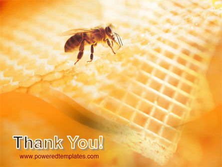 Wafers and Honey PowerPoint Template Slide 20