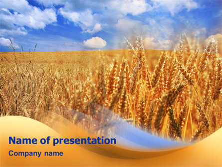 Agriculture: Wheat Field PowerPoint Template #01527