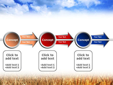 Wheat Field PowerPoint Template Slide 11