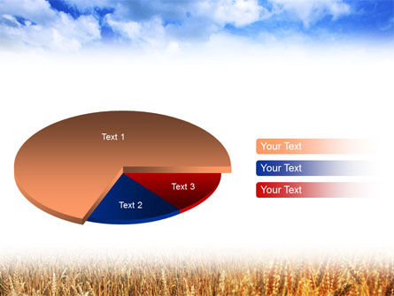 Wheat Field PowerPoint Template Slide 14