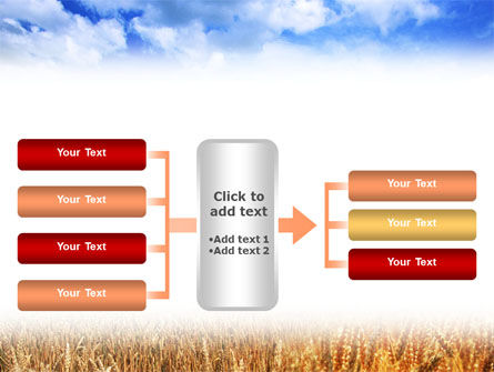 Wheat Field PowerPoint Template Slide 16