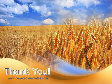 Wheat Field PowerPoint Template Slide 20