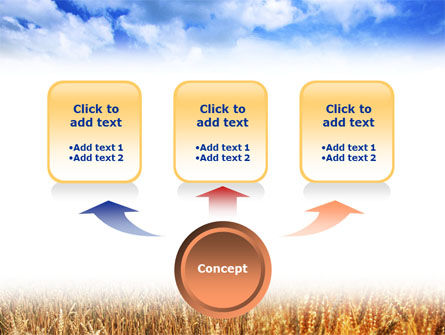 Wheat Field PowerPoint Template, Slide 4, 01527, Agriculture — PoweredTemplate.com