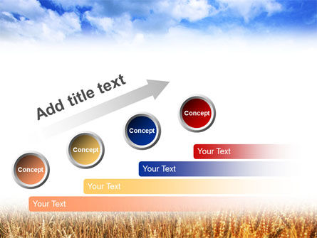 Wheat Field PowerPoint Template Slide 9