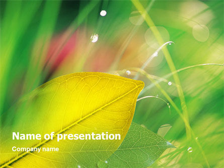 Yellow Leaf In Green Grass PowerPoint Template