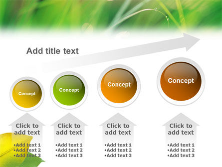 Yellow Leaf In Green Grass PowerPoint Template Slide 13