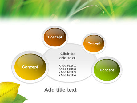 Yellow Leaf In Green Grass PowerPoint Template Slide 16
