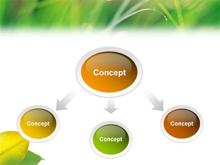 Yellow Leaf In Green Grass PowerPoint Template Slide 4