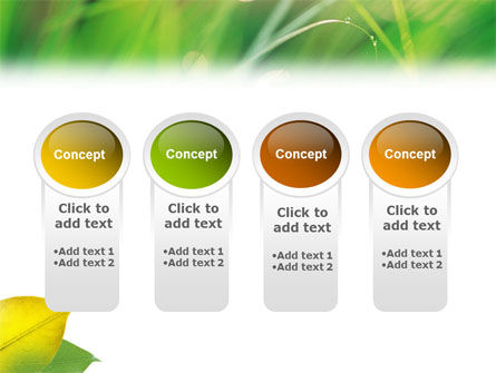 Yellow Leaf In Green Grass PowerPoint Template Slide 5