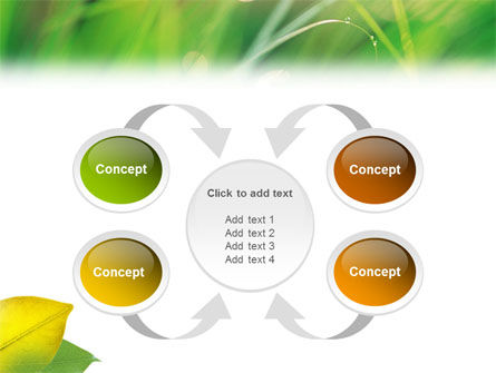 Yellow Leaf In Green Grass PowerPoint Template Slide 6
