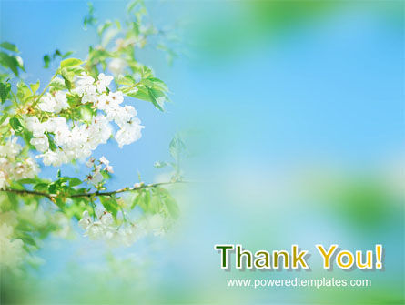 Springtime PowerPoint Template Slide 20