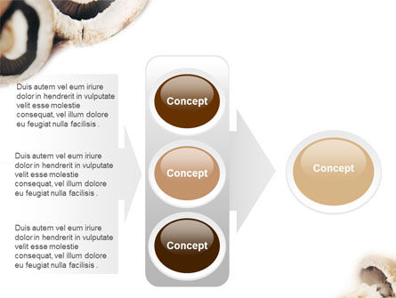 Mushrooms PowerPoint Template Slide 11