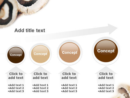 Mushrooms PowerPoint Template Slide 13