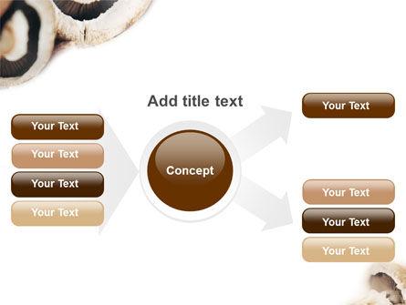 Mushrooms PowerPoint Template Slide 14