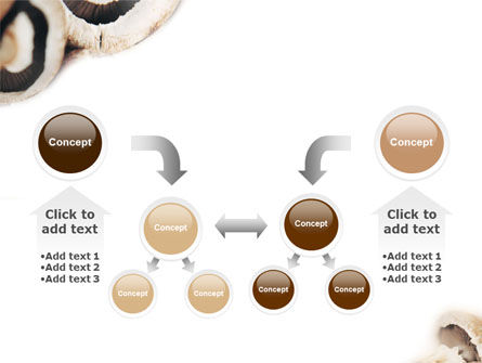 Mushrooms PowerPoint Template Slide 19