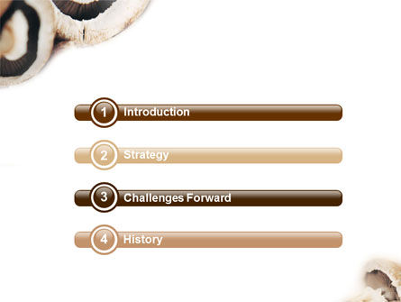 Mushrooms PowerPoint Template, Slide 3, 01601, Food & Beverage — PoweredTemplate.com