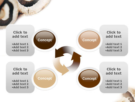 Mushrooms PowerPoint Template Slide 9
