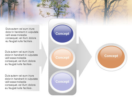 Forest Fire PowerPoint Template Slide 11