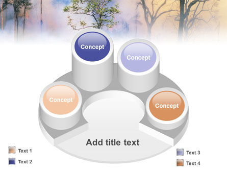 Forest Fire PowerPoint Template Slide 12