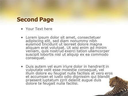 Leopard PowerPoint Template, Slide 2, 01640, Animals and Pets — PoweredTemplate.com
