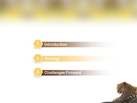 Leopard PowerPoint Template, Slide 3, 01640, Animals and Pets — PoweredTemplate.com