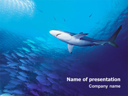 Ocean Wildlife PowerPoint Template