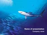 Nature & Environment: Ocean Wildlife PowerPoint Template #01649