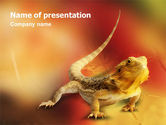 Animals and Pets: Modello PowerPoint - Rettile #01656