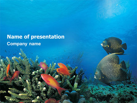Nature & Environment: Koraalrif PowerPoint Template #01691