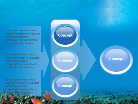 Coral Reef PowerPoint Template Slide 11