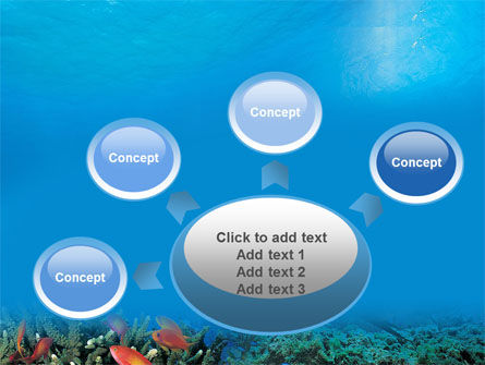 Coral Reef PowerPoint Template Slide 7