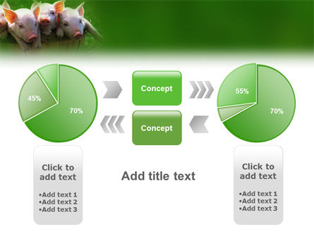 Pig PowerPoint Template Slide 11