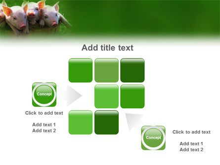 Pig PowerPoint Template Slide 16