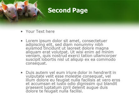 Pig PowerPoint Template Slide 2
