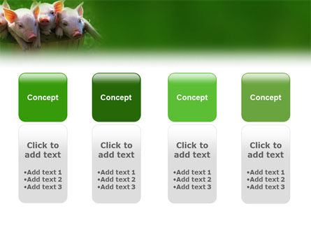 Pig PowerPoint Template Slide 5