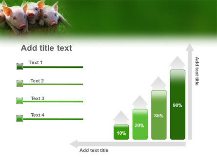 Pig PowerPoint Template Slide 8