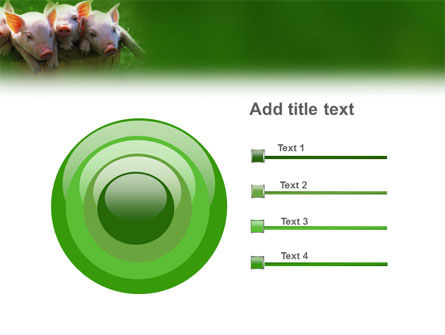 Pig PowerPoint Template Slide 9