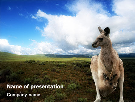 Kangaroo PowerPoint Template, 01717, Nature & Environment — PoweredTemplate.com