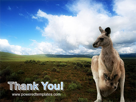 Kangaroo PowerPoint Template Slide 20